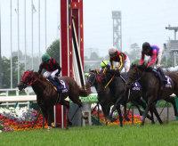 20080629-00000031-spnavi-horse-thum-000.jpg
